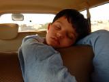 Sleepy traveller