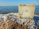 Bull Tales visits the Dead Sea (2015)