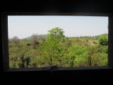 View from Rahil's room