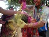How Rahil got his color