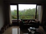 Rainy day nap