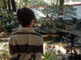 Contemplating fish at an Ashram