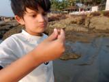 Found a shell!