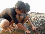 Exploring tidal pools with pal Imran