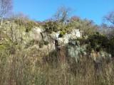 Ravelston Quarry