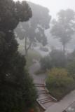 Fog in Stockholm