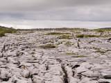 Limestone pavement in the Burren