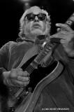 Steady Rollin Bob Margolin