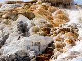 Mammoth Hot Springs Terraces_2