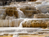 Mammoth Hot Springs Terraces_4