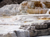 Mammoth Hot Springs Terraces_6