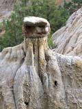 Lhama Rock Theodore Roosevelt Nat Park