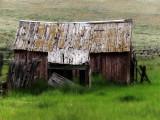 Old Small Barn Montana_rp.jpg
