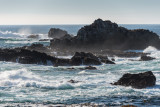 POINT LOBOS PARK, CA