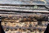 Pyrenopeziza atrata on Hogweed stem RuffordCP May-14 HW m.jpg