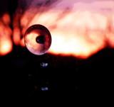 Eyeball in the Sky