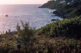 Bermuda+2000+6_.jpg