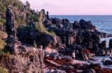 Bermuda+2000+3_.jpg