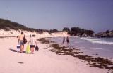 Bermuda+2000+14_.jpg