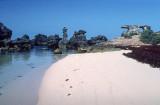 Bermuda+6_2.jpg