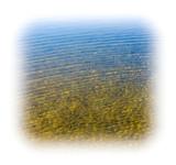 Water Coast River and Ocean