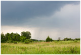 Rain on the prairie, Pratts Wayne Woods Forest Preserve, DuPage County