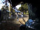 Libertà della acqua - Satiro danzante