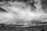 Black & White Desert Portfolio