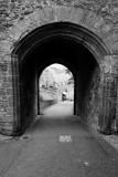 Dunster Castle  13_d800_0725