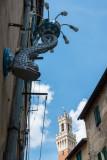 Torre del Mangia Siena  14_d800_1852