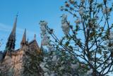 Notre Dame dusk  15_d800_0126