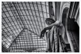 Louvre interior  15_d800_0410