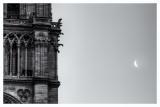 Notre Dame Morning  15_d800_0947