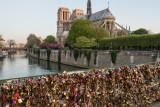 Notre Dame Morning  15_d800_0976