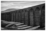 Ribblehead Viaduct  15_d800_5410