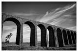 Ribblehead Viaduct  15_d800_5447