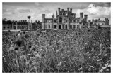 Lowther Castle  15_d800_7311