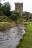 Blarney Castle  16_d90_DSC_0368