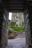 Blarney Castle  16_d90_DSC_0471
