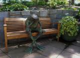 Frog at Atlanta Botanic Garden