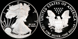 2010 W Silver Eagle---Proof