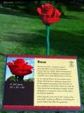 Lego Rose
