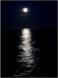 Moon Light on the Ocean