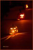 Pumpkin's Glow