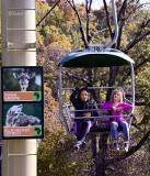 Gondola #10 Riding the Sky Safari