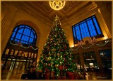 The Tree at Union Station 2013