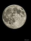The Hay Moon