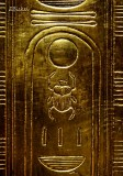 Scarab Etched on Gold Coffin