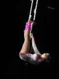 Girl on Trapeze