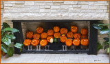 Pumpkins in the Fireplace